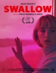 Poster Swallow