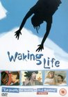 Poster Waking Life